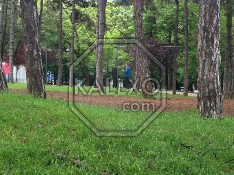 Kallaxo.com photograph