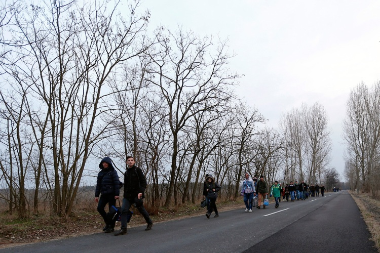 Kosovar migrants walk on a road after illegally crossing the Hungarian-Serbian border near the village of Asotthalom